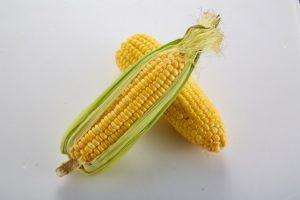 maíz-hidratos